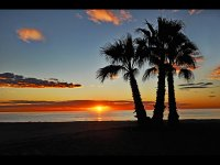 1st Group 1 'Benicassim Sunrise' by Mick O'Malley