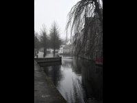 Misty Day in Bruges